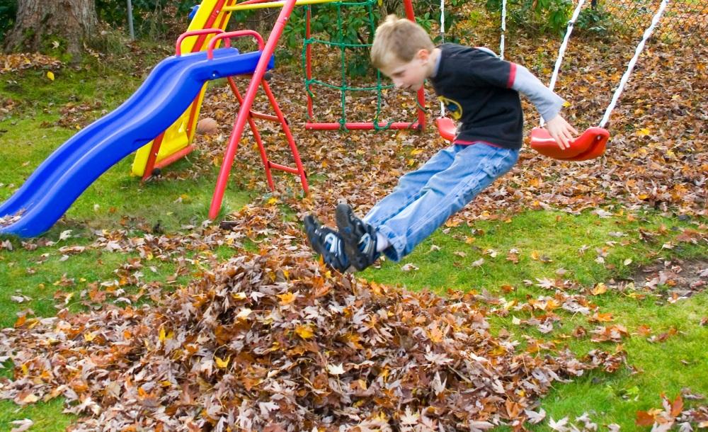 fall-leaves-095