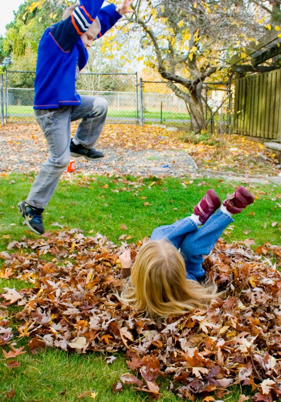 fall-leaves-117-copy