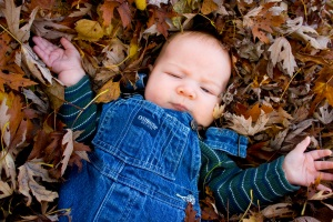 fall-leaves-032